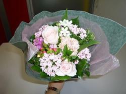 20081010seikon4.jpg
